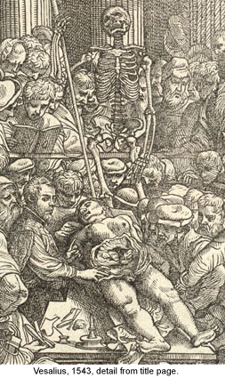 [Detail from engraved title page, 1543 (ai0085d)]